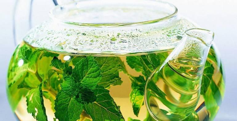 Как пить крапиву для потенции