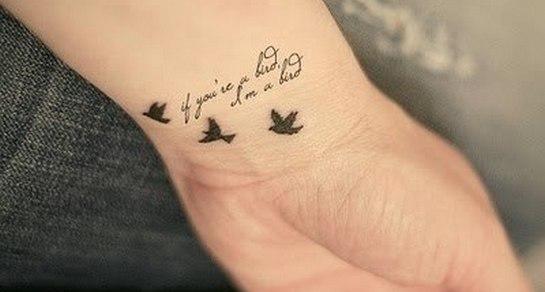 птицы с надписью