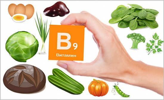 продукты богатые витамином в9
